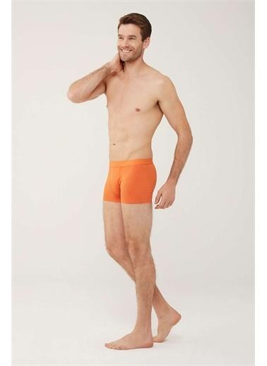U.S. Polo Assn. U.S. Polo Assn. Erkek Mint Tekli Boxer Oranj
